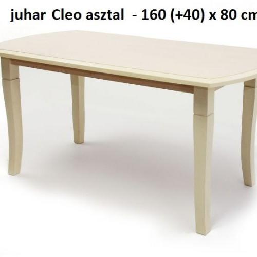 CLEO asztal
